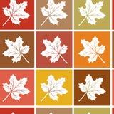 Modello senza cuciture di autunno con le foglie di acero bianche sul quadrato Illustrazione di vettore illustrazione di stock