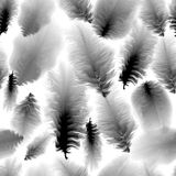 Modello senza cuciture di in bianco e nero Fotografie Stock Libere da Diritti