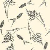 Modello senza cuciture di boho delle erbe del campo Illustrazione di vettore illustrazione vettoriale
