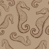 Modello senza cuciture di Brown con gli ippocampi disegnati a mano Immagine Stock Libera da Diritti