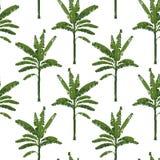 Modello senza cuciture di estate per il tessuto, banana verde tropicale Fotografia Stock Libera da Diritti
