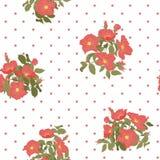 Modello senza cuciture di fioritura dei fiori selvaggi con i pois su stile disponibile del disegno del fondo bianco Vettore royalty illustrazione gratis