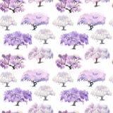 Modello senza cuciture di fioritura del giardino cinese dell'acacia dipinto in w Immagine Stock Libera da Diritti