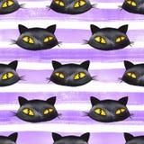 Modello senza cuciture di Halloween con il gatto nero Fotografia Stock Libera da Diritti