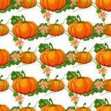 Modello senza cuciture di Halloween Fondo con la zucca Fotografia Stock