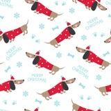 Modello senza cuciture di inverno con i cani svegli Fotografia Stock Libera da Diritti