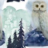 Modello senza cuciture di inverno in foresta illustrazione vettoriale