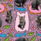 Modello senza cuciture di tiraggio del fumetto del gatto Immagini Stock Libere da Diritti
