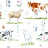 Modello senza cuciture di una mucca, delle pecore, di una capra, di un fiore e di un latte Fotografie Stock Libere da Diritti