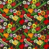 Modello senza cuciture di verdure con i cetrioli, pomodori rossi, peperone dolce, barbabietola, carota, cipolla, aglio, peperonci Fotografie Stock