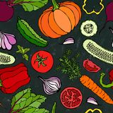 Modello senza cuciture di verdure con i cetrioli, pomodori rossi, peperone dolce, barbabietola, carota, cipolla, aglio, peperonci Immagini Stock Libere da Diritti