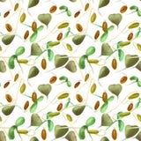 Modello senza cuciture di verdure del germoglio del grano della soia del grano saraceno di schizzo, utilizzato in vegano e nelle  royalty illustrazione gratis