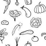 Modello senza cuciture di verdure disegnato a mano Illustrazione di vettore Fotografia Stock Libera da Diritti