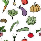 Modello senza cuciture di verdure disegnato a mano Illustrazione di vettore Fotografia Stock