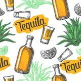 Modello senza cuciture di vetro e botlle, vetro, sale, cactus e calce su fondo bianco Illustrazione d'annata dell'incisione per Fotografie Stock