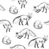 Modello senza cuciture di vettore con i caratteri animali svegli Disegnato a mano Fotografia Stock Libera da Diritti