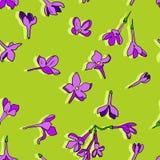 Modello senza cuciture di vettore con i fiori lilla illustrazione di stock