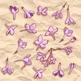 Modello senza cuciture di vettore con i fiori lilla illustrazione vettoriale