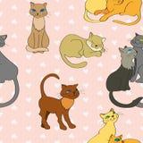 Modello senza cuciture di vettore con i gatti illustrazione vettoriale