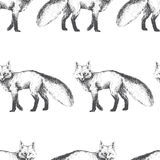 Modello senza cuciture di vettore con il carattere animale sveglio Disegnato a mano Fotografia Stock Libera da Diritti