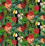 Modello senza cuciture di vettore con il tucano dell'uccello tropicale, i pappagalli con i fiori esotici e le foglie di palma illustrazione vettoriale