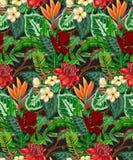 Modello senza cuciture di vettore con le foglie di palma tropicali, piante della giungla, fiori esotici royalty illustrazione gratis