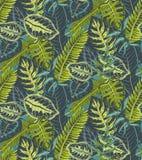 Modello senza cuciture di vettore con le foglie di palma tropicali, piante della giungla royalty illustrazione gratis