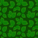 Modello senza cuciture di vettore con le foglie verdi Fotografie Stock