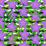 Modello senza cuciture di vettore dalle foglie verdi Fotografie Stock Libere da Diritti