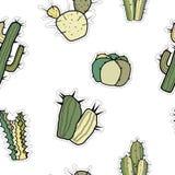Modello senza cuciture di vettore degli autoadesivi con differenti cactus su fondo bianco illustrazione vettoriale
