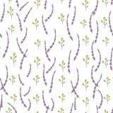 Modello senza cuciture di vettore dei fiori e delle erbe del giardino Fondo disegnato a mano di ripetizione di stile del fumetto  illustrazione di stock