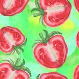 Modello senza cuciture di vettore del pomodoro dell'acquerello Fotografie Stock Libere da Diritti