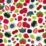 Modello senza cuciture di vettore delle bacche Fragola, ribes nero, bluberry, uva spina, ciliegia, acerola Fotografie Stock Libere da Diritti