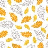 Modello senza cuciture di vettore delle foglie della quercia di autunno Fotografia Stock