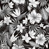 Modello senza cuciture di vettore delle foglie tropicali monocromatiche illustrazione vettoriale