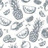 Modello senza cuciture di vettore di frutti tropicali Schizzi l'illustrazione disegnata a mano dell'ananas, il limone, l'anguria, illustrazione di stock