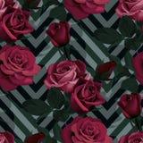 Modello senza cuciture di vettore rosso-cupo delle rose Fiori scuri sul fondo del gallone, struttura fiorita illustrazione di stock