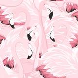 Modello senza cuciture di vistosità rosa esotica dei fenicotteri illustrazione vettoriale