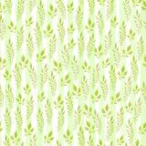 Modello senza cuciture dipinto a mano acquerello Fogli di verde su priorità bassa bianca Uso per carta da imballaggio, tessuti, c immagine stock libera da diritti