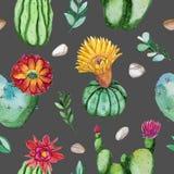 Modello senza cuciture dipinto a mano dell'acquerello della pianta di fioritura del cactus illustrazione di stock