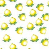 Modello senza cuciture disegnato a mano con lo schizzo dell'inchiostro ed i limoni e le foglie gialli dell'acquerello su fondo bi fotografia stock libera da diritti