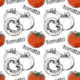 Modello senza cuciture disegnato a mano dei pomodori Fotografia Stock Libera da Diritti