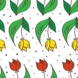 Modello senza cuciture disegnato a mano dei tulipani di vettore Può essere Immagini Stock