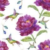Modello senza cuciture disegnato a mano dell'acquerello con i bei fiori e gli uccelli variopinti su fondo bianco Immagine Stock Libera da Diritti