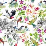 Modello senza cuciture disegnato a mano dell'acquerello con i fiori tropicali di estate e gli uccelli esotici Fotografia Stock Libera da Diritti