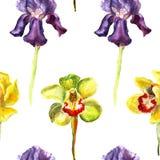 Modello senza cuciture disegnato a mano dell'acquerello dell'iride viola del beutifull e dell'orchidea gialla e verde su fondo bi Immagini Stock Libere da Diritti