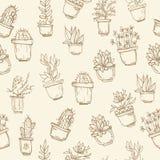 Modello senza cuciture disegnato a mano sveglio con il cactus Immagini Stock Libere da Diritti