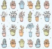 Modello senza cuciture disegnato a mano sveglio con il cactus illustrazione vettoriale