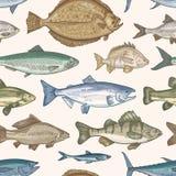 Modello senza cuciture elegante con differenti tipi di pesci su fondo leggero Contesto con gli animali marini o d'acqua dolce illustrazione di stock