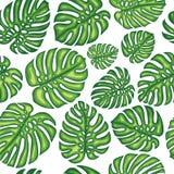 Modello senza cuciture esotico di estate con le foglie tropicali Immagini Stock